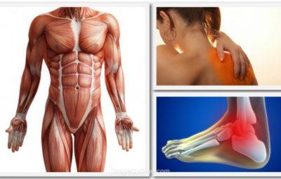 Comprendre et gérer les 5 blessures du sportif