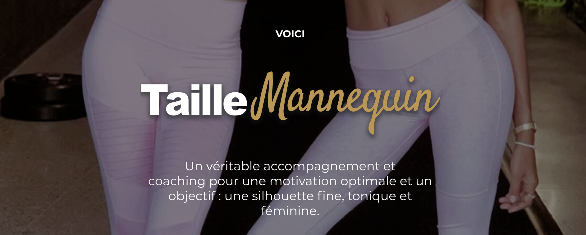 programme taille mannequin